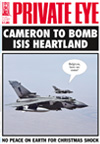 David Cameron Fighter Pilots